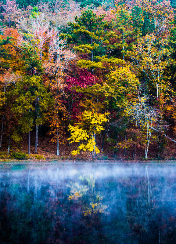 colors-in-early-morning-fog-parker-cunningham